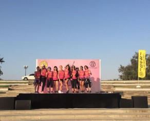 Gold's Gym Pink Power 2017